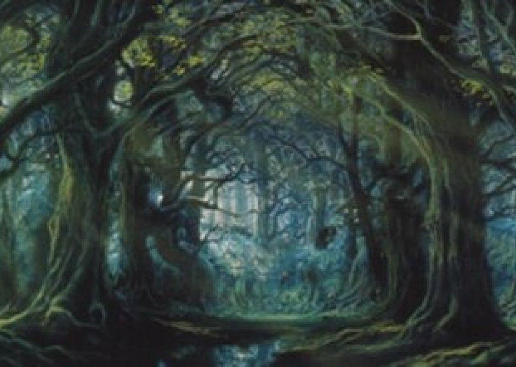 treebeard u0026 39 s wellinghall audio atmosphere
